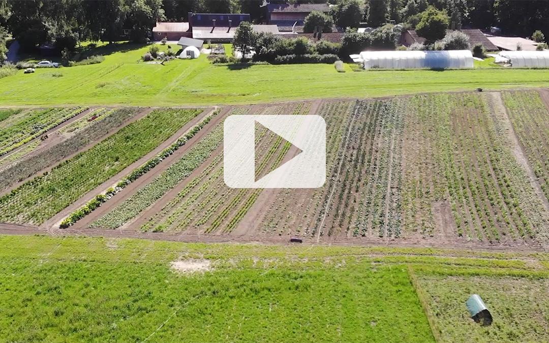 Ein kleiner Video-Beitrag über unseren Biohof